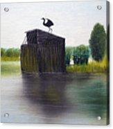 Duck Blind Acrylic Print