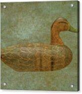 Duck Decoy Number Three Acrylic Print