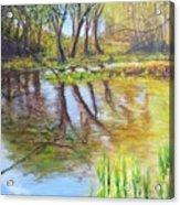 Duck Pond I Acrylic Print