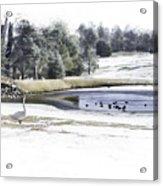 Broadmoor Winter Swim Acrylic Print