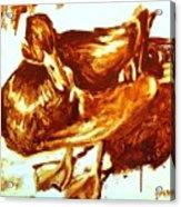 Duck Study Acrylic Print
