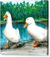 Ducks By The Pond Acrylic Print