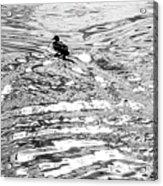 Ducks Swirl Acrylic Print