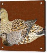 Ducks - Wood Carving Acrylic Print