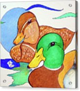 Ducks2017 Acrylic Print by Loretta Nash