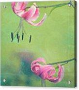Duet - V01a Acrylic Print