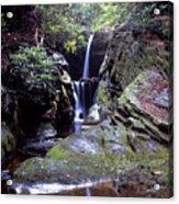 Duggers Creek Falls Acrylic Print