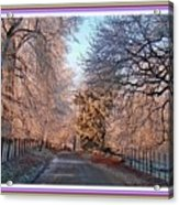 Dundalk Avenue In Winter. L B With Decorative Ornate Printed Frame. Acrylic Print