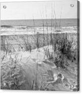 Dune - Black And White Acrylic Print