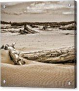 Dune Country Acrylic Print