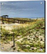 Dunes At Tybee Island Acrylic Print