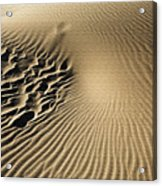 Dunes Footprints Acrylic Print