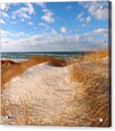 Dunes In Winter Acrylic Print