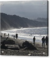 Dungeness Spit Acrylic Print