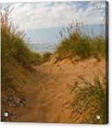 Nova Scotia's Cabot Trail Dunvegan Beach Dunes Acrylic Print