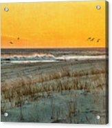 Dusk At The Shore Acrylic Print