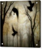 Dusk Begins As The Crows Fly Acrylic Print
