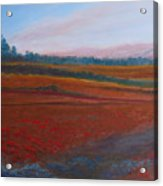 Dusk Falls On The Pumice Field Acrylic Print