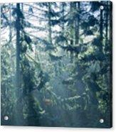 Dusk In Ashenvale IIi Acrylic Print