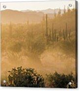 Dust Storm In The Desert Acrylic Print