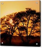 Dusty Sunrise Acrylic Print