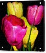 Dutch Palette Acrylic Print
