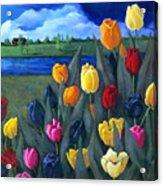 Dutch Tulips With Landscape Acrylic Print