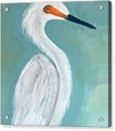 Dutchess Egret Art By Brenda Boss Acrylic Print