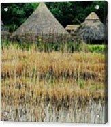 Dyflin Viking Village, Ireland Acrylic Print