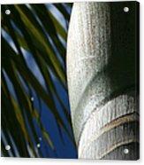 E Hawaii Aloha E Acrylic Print