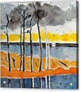Eagle At Blackwater Acrylic Print