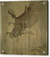 Eagle Door Panel Acrylic Print