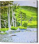 Eagle Lake, Acadia, Maine Acrylic Print