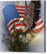 Eagle Lands Acrylic Print