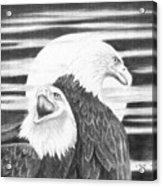Eagles Acrylic Print