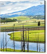 Eagles View, Hayden Valley, Yellowstone Acrylic Print