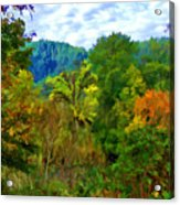 Early Autumn Along The Rogue River In Oregon Acrylic Print