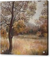 Early Autumn Acrylic Print