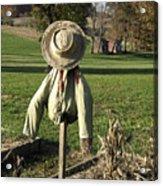 Early Autumn Scarecrow Acrylic Print