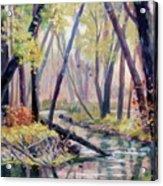 Early Fall On East Canyon Creek Acrylic Print
