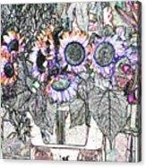Early Flower Study Acrylic Print