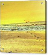 Early Morning Beach Walk Acrylic Print