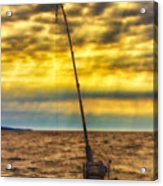 Early Morning Bite Acrylic Print