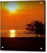 Early Morning Sunrise On A Silhouetted Beach Acrylic Print