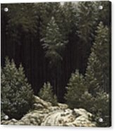 Early Snow Acrylic Print by Caspar David Friedrich