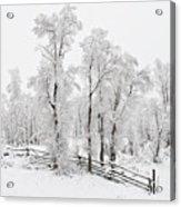 Early Spring Snow Acrylic Print
