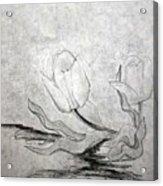 Early Spring Tulips Acrylic Print
