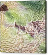 Earth Art 9492 Acrylic Print