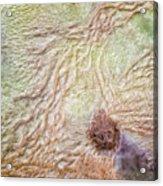 Earth Art 9495 Acrylic Print