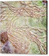 Earth Art 9499 Acrylic Print